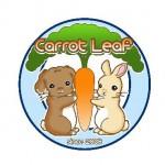 Carrot Leaf