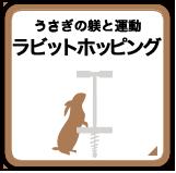 うさぎの躾と運動 ラビットホッピング