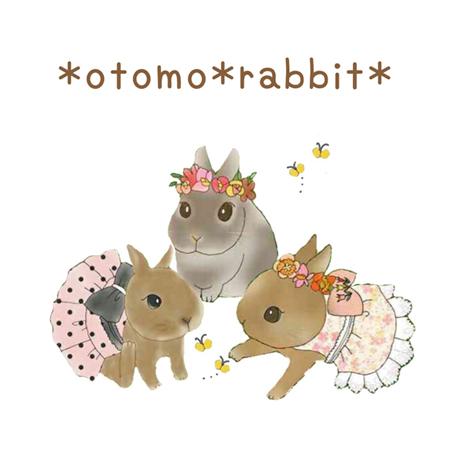 *otomo*rabbit*