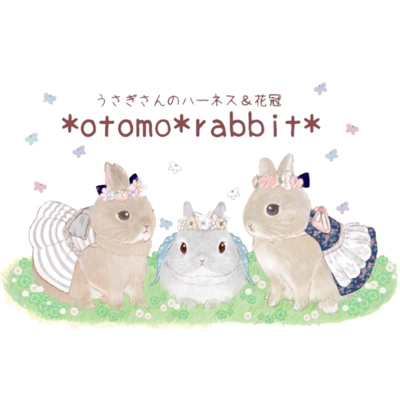 *otomo*rabbit*