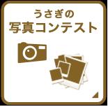 うさぎの写真コンテスト